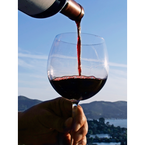 Specialty Wine Club - Pinot Noir Only