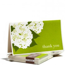 Snow & Graham Hydrangea - Thank You Cards (set of 8)